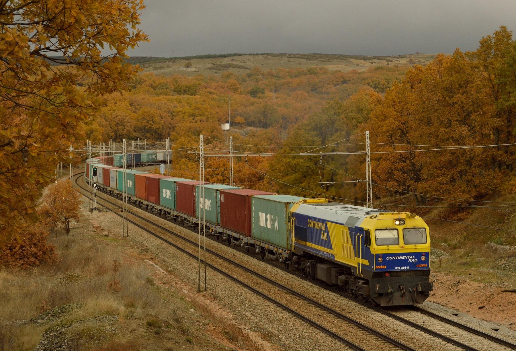 319 de Continental Rail con las nuevas plataformas de alquiler. Foto: Javier del Álamo.